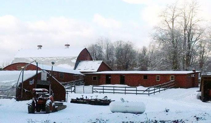 Miller's Crossing farm winter tractor