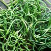 Farm at Miller's Crossing - organic garlic scapes